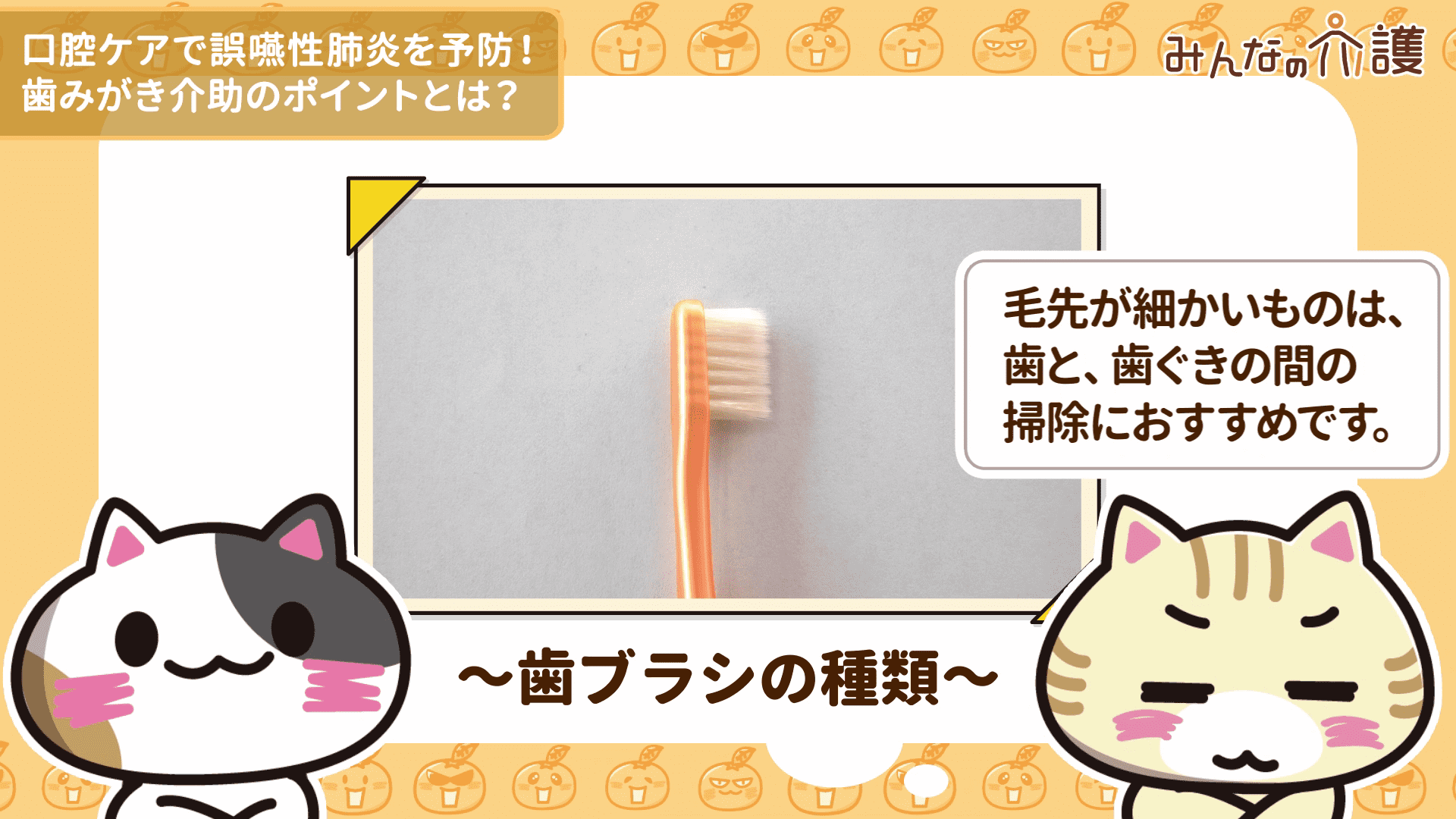 毛先が細かい歯ブラシの毛先