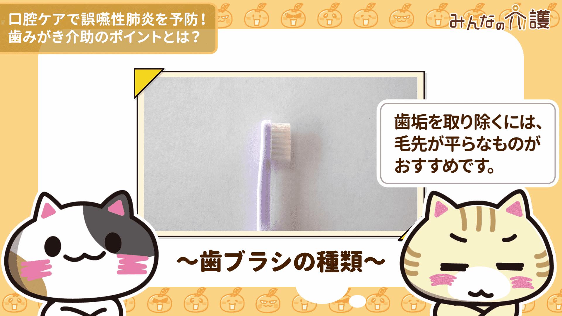 毛先が平らな歯ブラシの毛先